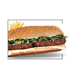 Kabab Combo